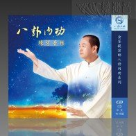 Energy Bagua Daily Practice Guide MP3 (Mandarin)
